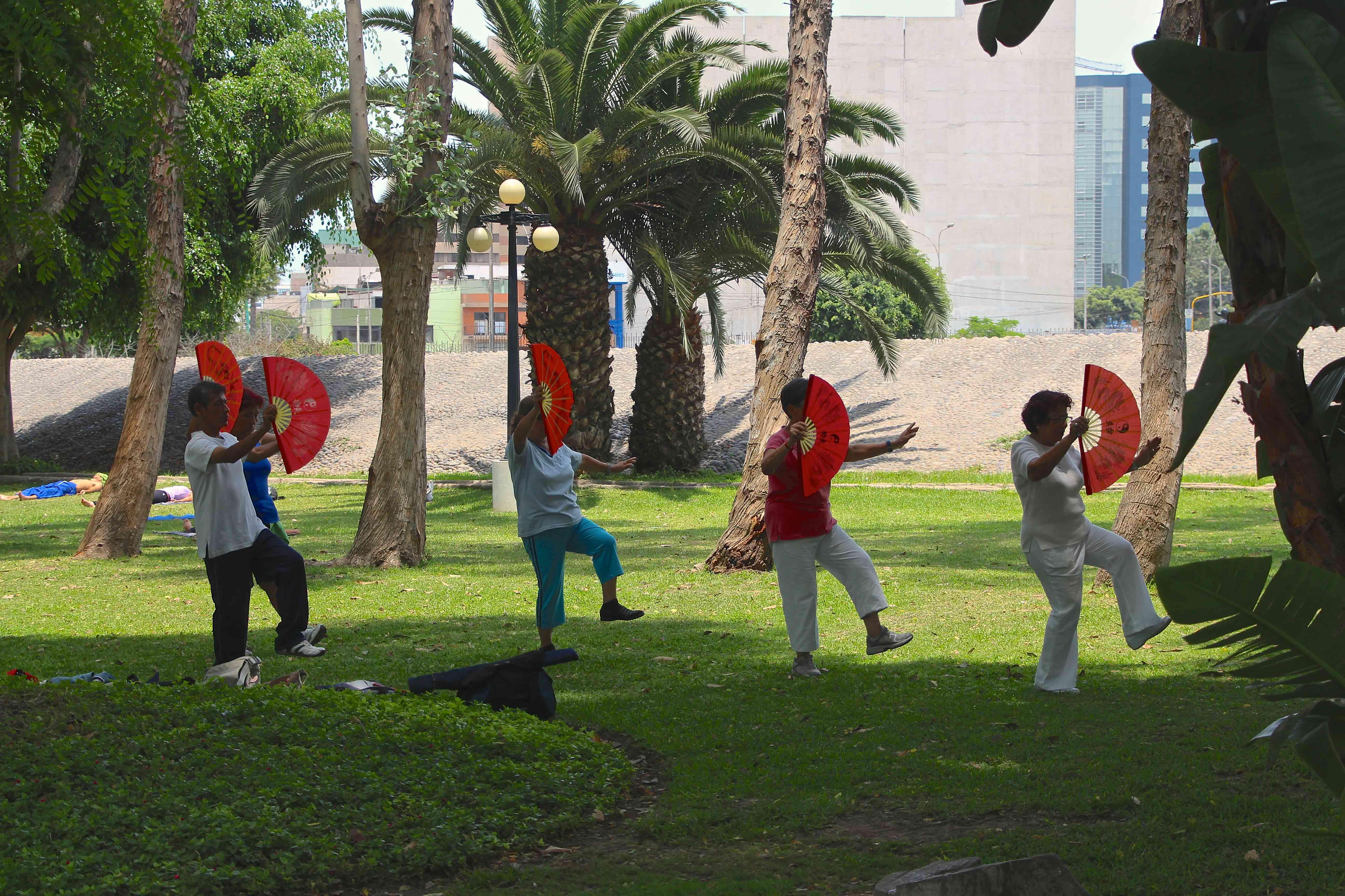 Tai Chi no Parque Reducto em Lima