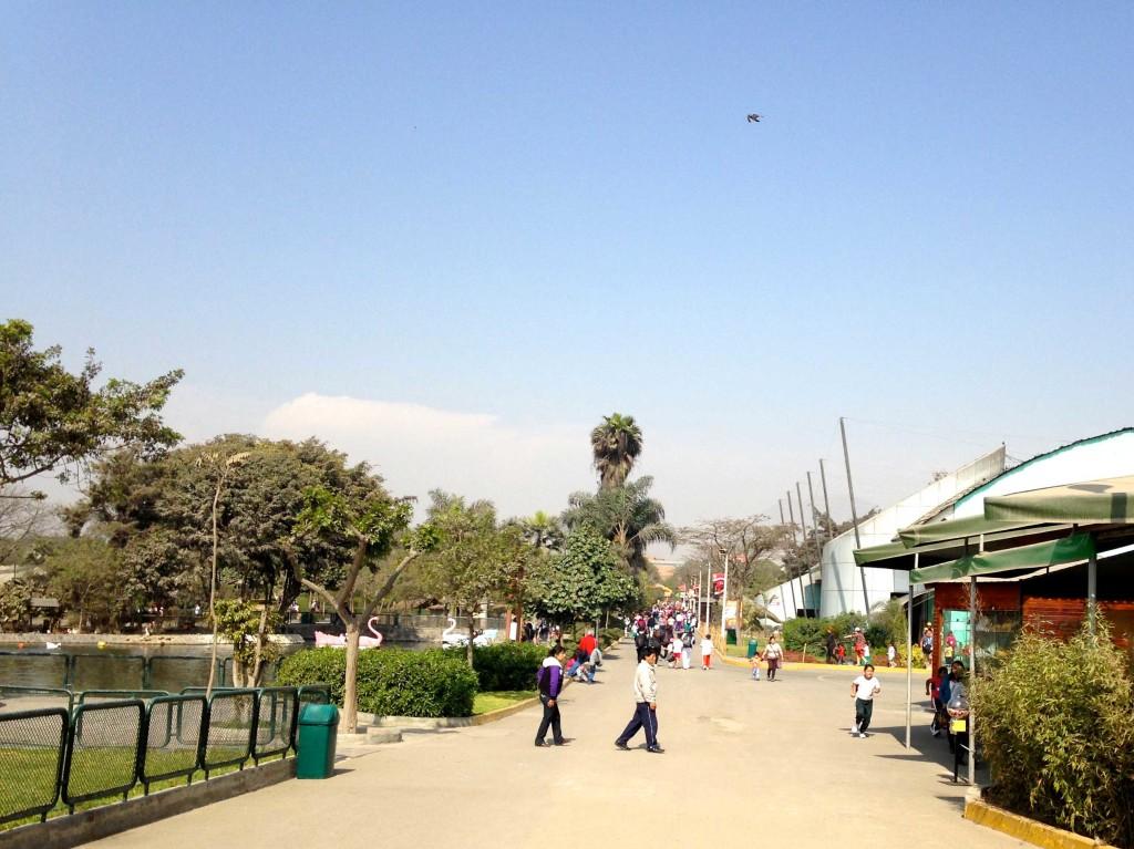 O parque tem áreas bem amplas e de fácil circulação.
