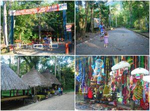Parque Nacional de Tingo Maria