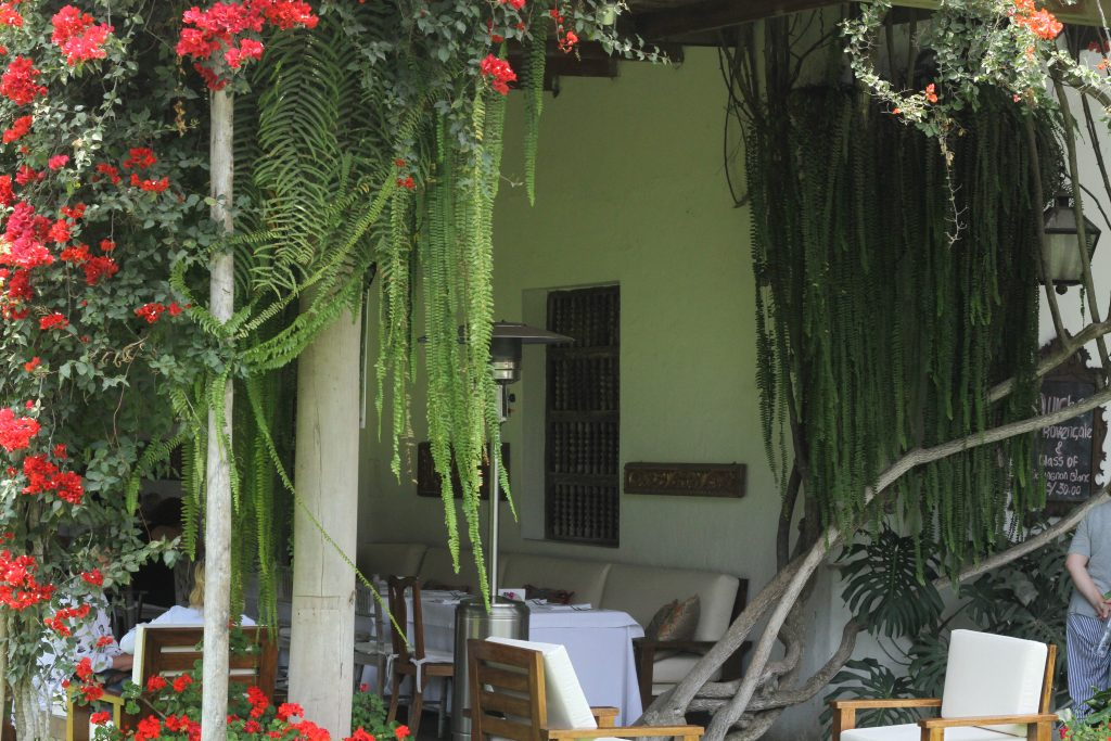 Restaurante e Café Museo Larco.