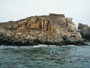 Islas Palomino em Lima, Peru